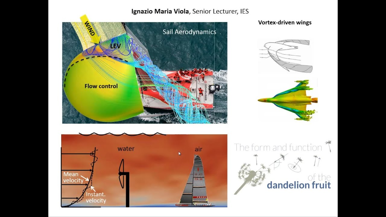 Dr Ignazio Maria Viola Research Interests - Fluid Mechanics & Areodynamics