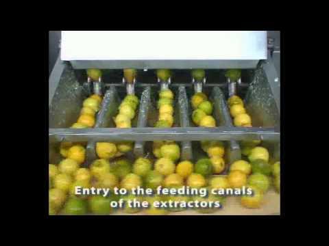 TRIOWIN |  Citrus concentrate juice Processing Line