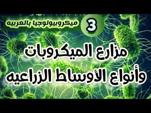 أنواع الأوساط الزراعيه للبكتيريا (مزارع الميكروبات - Microbial culture media) ميكروبيولوجيا بالعربي