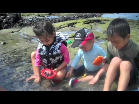 201203   Hawaii 2012