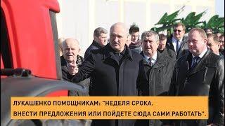 Лукашенко недоволен развитием сельского хозяйства на Могилевщине и грозит жесткими мерами.