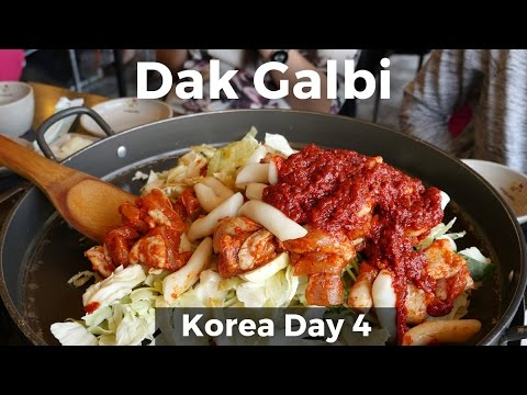 Giant Dak Galbi & Day Trip To Nami Island (Day 4)
