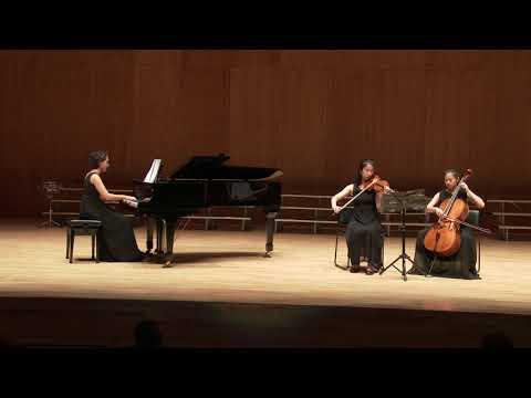 IB Music Trio (G10) - Cavatina by J. Raf