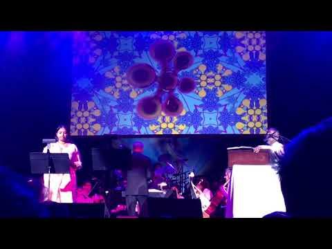 Ilayaraja's concert in Washington DC - Pagal Nilavu - poomalaiye Thol Serava