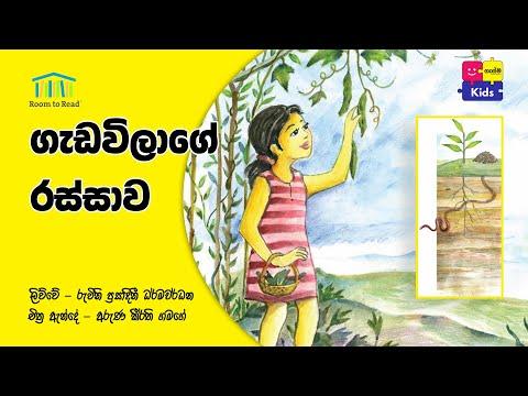 ගැඩවිලගේ රස්සාව | Gedavilage Rassawa _ Gasma Kids Cartoon