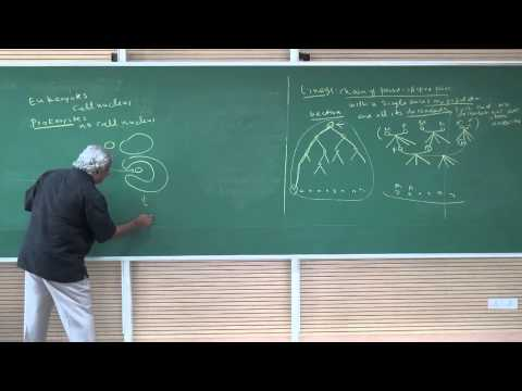 Introduction to Research 6 - Towards a Theory of Species