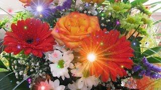 Вся эта красота для Вас!(Вся эта красота для Вас! Волшебная музыка и цветы Автор стилей stranger2156 Поздравления на все случаи жизни!..., 2015-12-05T15:53:55.000Z)