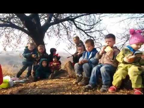 Family Life in Rural Ukraine, episode 6: Enei and Miloslava Birthday Party Скачать в HD