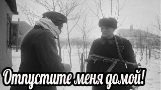 """""""Отпустите домой"""". Почему слёзы немца довели солдат РККА до колик в животе от смеха?"""