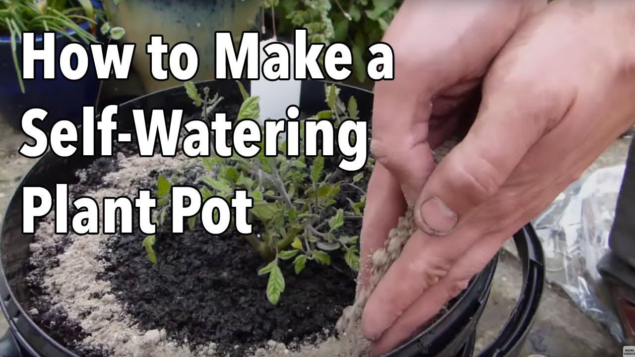 How To Make A Self Watering Plant Pot Youtube