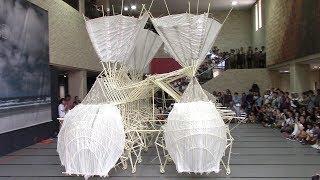風で動く芸術、まるで生き物 テオ・ヤンセン展 動く「ストランドビースト」たち 三重県立美術館