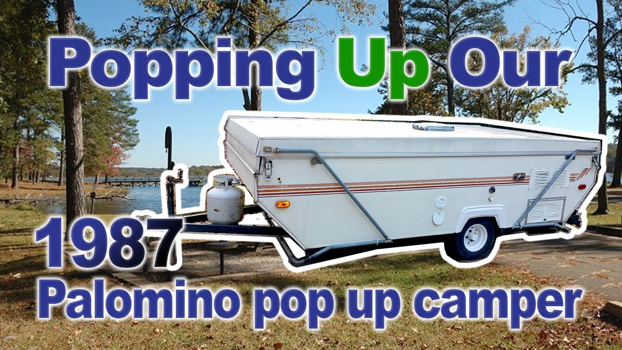 Popping up our 1987 Palomino Pop Up