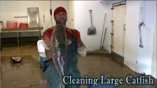 Speed Cleaning Flathead Catfish