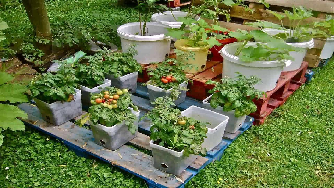 Balcony Vegetable Garden Design Ideas Gif Maker - DaddyGif ...