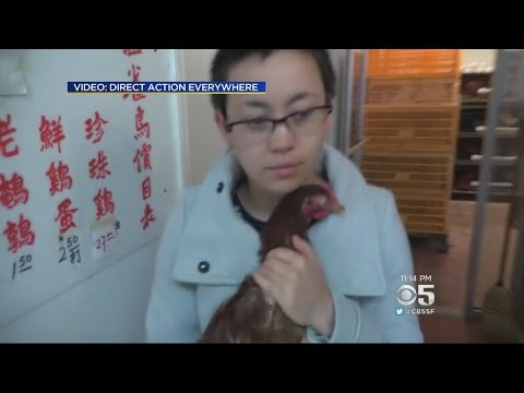 CHINATOWN: Animal Rights Activists Free Chicken From San Francisco Chinatown Market