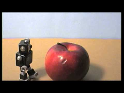 Stop Motion Animation for Adults: A Sampling