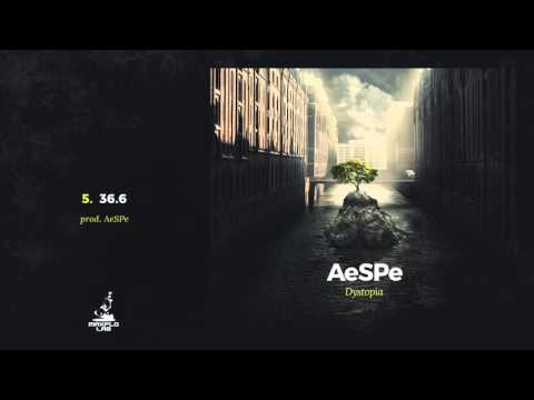 AeSPe - 05 36.6 (MaxFloLab)