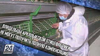 Владельцы Аркалыкской птицефабрики не могут получить полную компенсацию