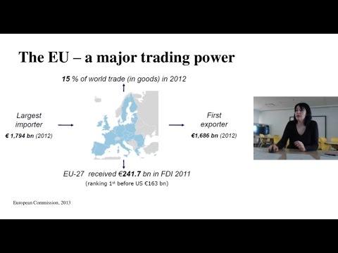 """""""Canada-EU Relations: CETA"""" - CES Webinar with Dr Crina Viju"""