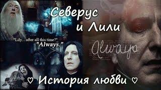 ♡ История любви Северуса Снейпа и Лили Эванс ♡