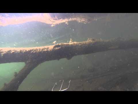 запреты на подводную охоту в смоленской области