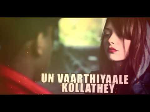 Ennala Marakka Mudiya Villai hd 1080p by(vaigai Hari).. thumbnail