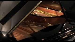 C. Bechstein - Grand Pianos & Uprights since 1853 : corporate film 2002