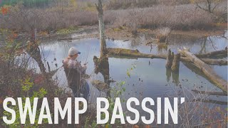Swamp Bass Fishing  -- October MTB Slam Pro Edition