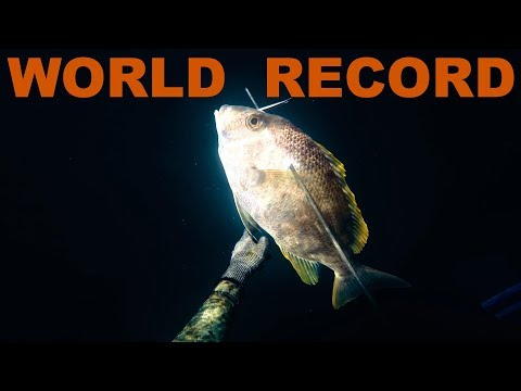 Spearfishing World Record  - Blue Lined Emperor - Madagascar