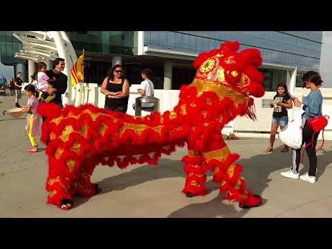 4   Viet Fest Video Lion Dance