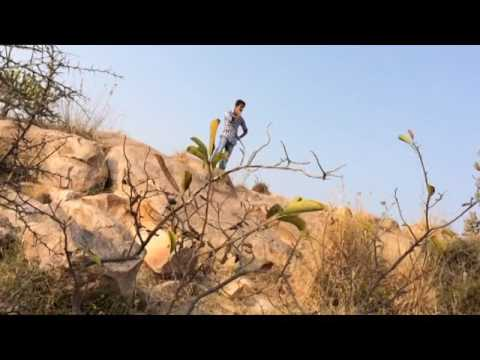 Nenu Local || Arere Ekkada Ekkada Female Video Sad Song || Nani and Keerthi Suresh
