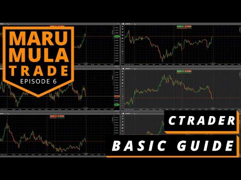 EP 6 : PANDUAN BASIC cTRADER