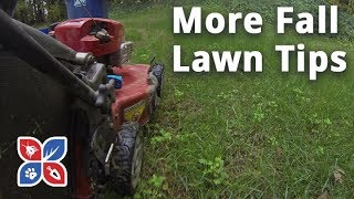Do My Own Lawn Care - More Fall Lawn Tips