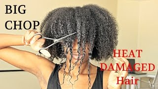 BIG CHOP 2016 On My HEAT DAMAGED HAIR | TwinGodesses