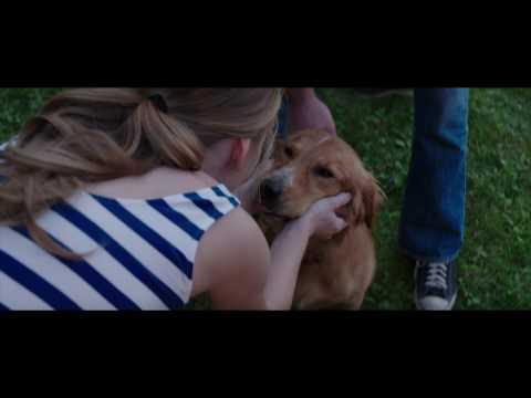 """""""Był sobie pies"""" [fragment]"""