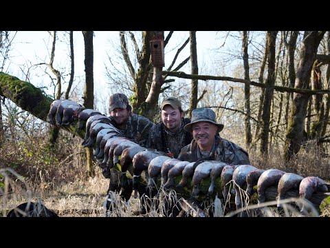 Sauvies Island Duck Hunt