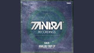 Analog Trip (Original Mix)