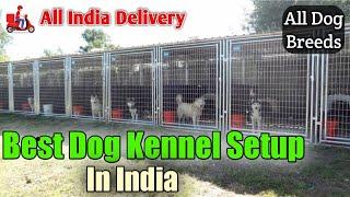 ARM Dog Kennel, Ambajogai,Beed, Maharashtra