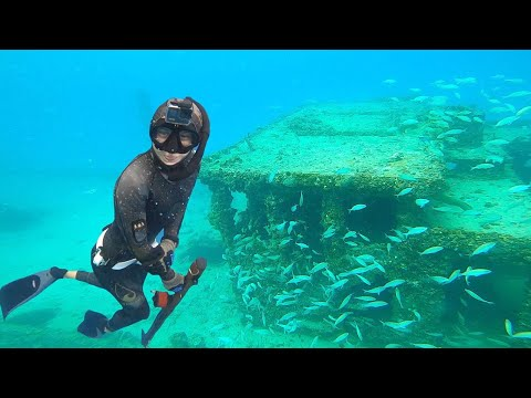 Spearfishing Underwater WRECK In MIAMI Florida