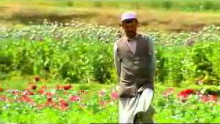 Afghanistan  Drugs  Guns and Money - 04