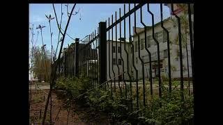 В таёжном смолистом краю  На территории Братского музучилища высадят несколько сотен елей