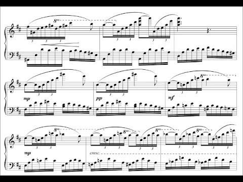 Marco Sala - PORT DE BRAS - (CENTRE) - Music for Ballet II