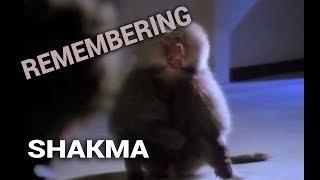 Remembering: Shakma (1990)