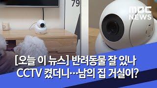[오늘 이 뉴스] 반려동물 잘 있나 CCTV 켰더니…남…