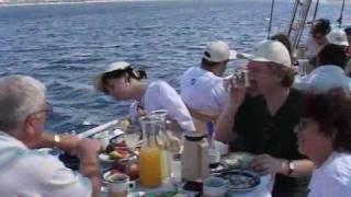 Эйлат : вечное лето на Красном море  (часть 2-я). Видео прогулка(Эйлат, Израиль. Дельфиний риф, аттракцион