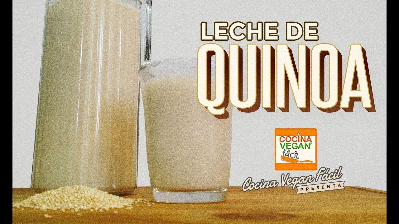 Leche de quinoa  Cocina Vegan Fcil  YouTube