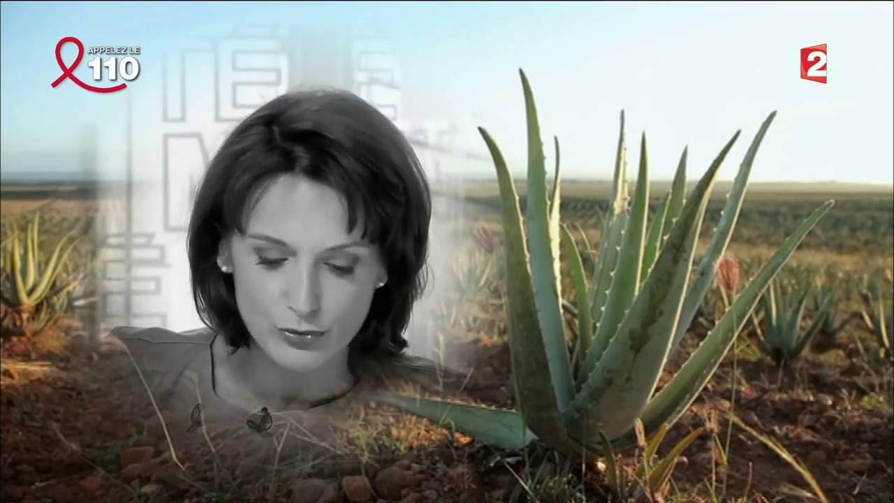 Download Reportage sur l'Aloe Vera Télé Matin 05042014