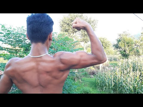 How I Train My Biceps | Bigger Bicep Workout | ANISH FITNESS |