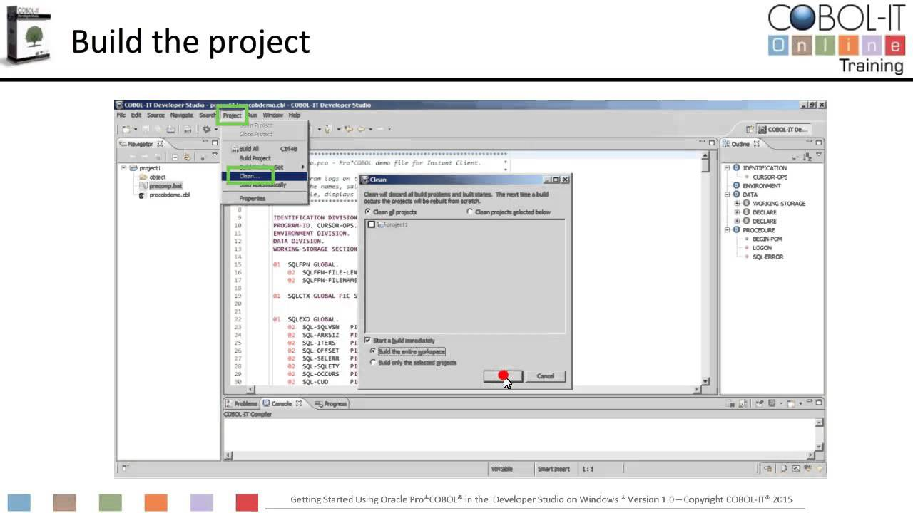 Getting Started using Pro*COBOL on Windows