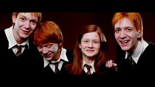 The Weasleys Brother